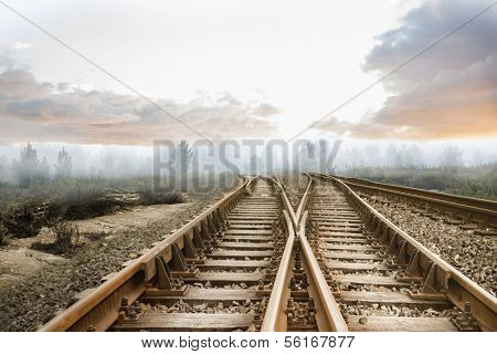 Railway tracks leading to misty forest