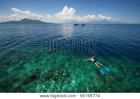 Man snorkeling in a tropical sea by reef's drop off. Indonesia