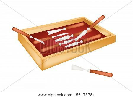 Set Of Carving Tools In A Box