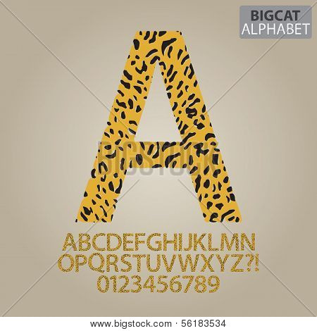 Bigcat Skin Alphabet And Numbers Vector