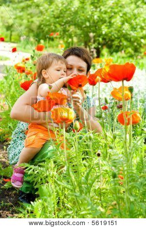 Flores de demostración de madre a hija