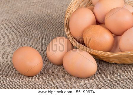 Fresh eggs in basket