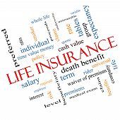foto of proceed  - Life Insurance Word Cloud Concept Angled with great terms such as term whole life rider quote and more - JPG