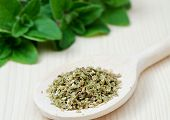 Dried Oregano Leaves On Wooden Spoon