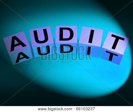 Audit Dice Refer To Investigation Examination And Scrutiny