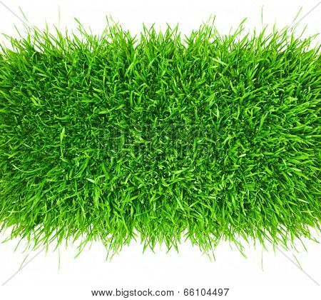 Green grass area isolated on white