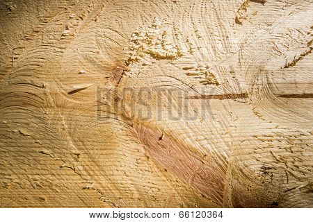 The Cut Wood, The Texture Of The Wood