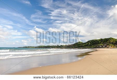 Beach Of Baia Formosa, Bahia (brazil)