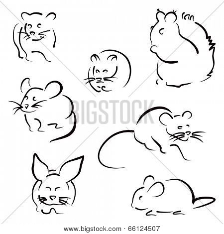 Different rodents