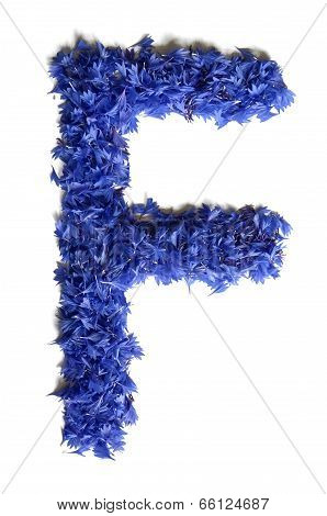 Letter F Made Of Flowers (cornflowers) Isolated On White Background