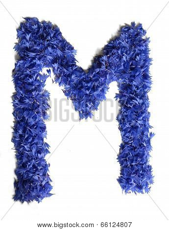 Letter M Made Of Flowers (cornflowers) Isolated On White Background