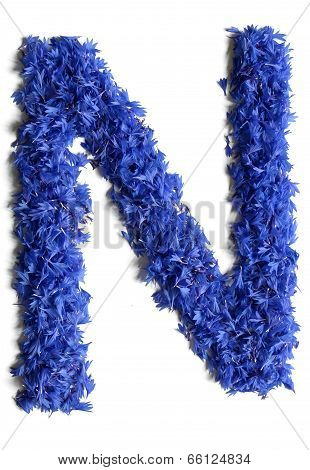 Letter N Made Of Flowers (cornflowers) Isolated On White Background