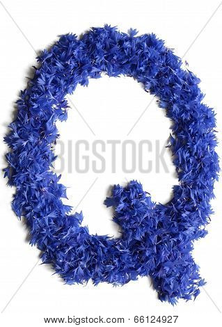 Letter Q Made Of Flowers (cornflowers) Isolated On White Background