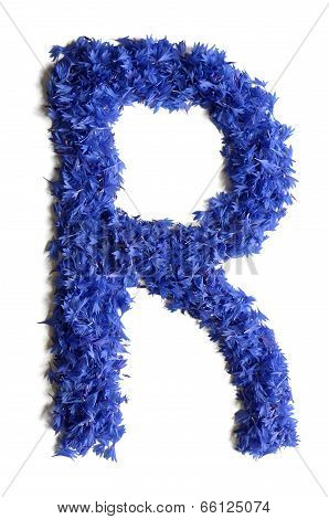 Letter R Made Of Flowers (cornflowers) Isolated On White Background