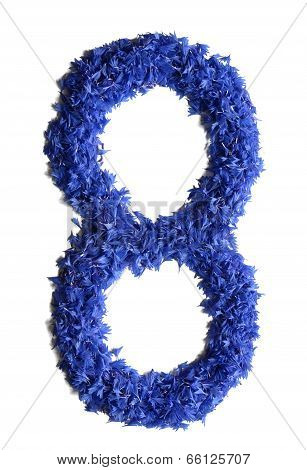 Number 8 Made Of Flowers (cornflowers) Isolated On White Background