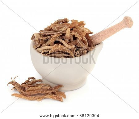 Stemona root chinese herbal medicine in a stone mortar with pestle over white background. Bai bu.