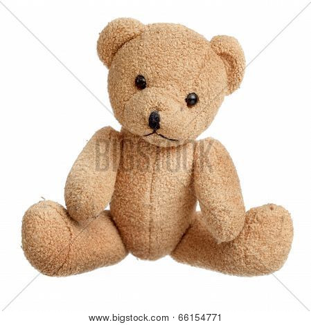 Toy Bear Isolated