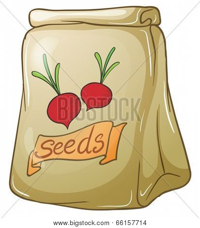 Illustration of a pack of onion seeds on a white background