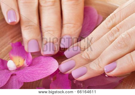 Spa Treatment For Hands