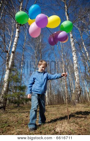 The Boy With A Sheaf Of Balloons In Park In The Spring