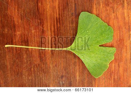 Ginkgo biloba leaf on wooden background