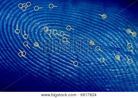 Fingerprint With Minutiae