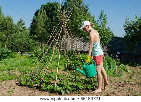 Girl Garden Watering Can Stick Tower  Beans