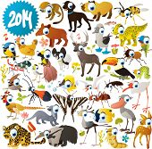 stock photo of prehistoric animal  - Big vector animal set - JPG