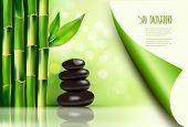 pic of bamboo leaves  - Spa background with bamboo and stones - JPG