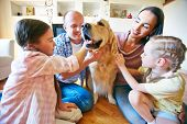 image of cuddle  - A young friendly family of four cuddling their pet - JPG