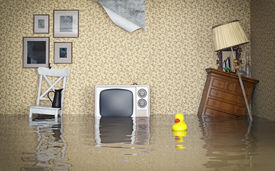 picture of leak  - Flooded vintage interior - JPG