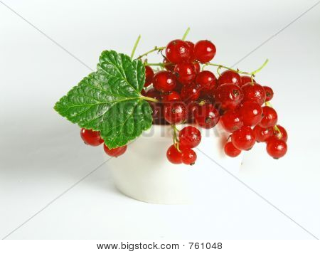 Summer Fruits: Redcurrant