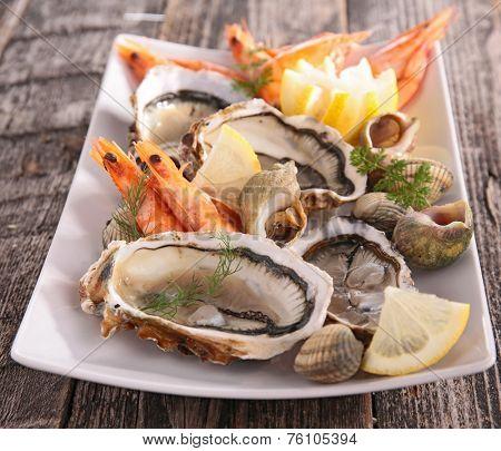 oyster, shrimp and shellfish