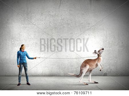 Young woman in casual holding kangaroo on lead