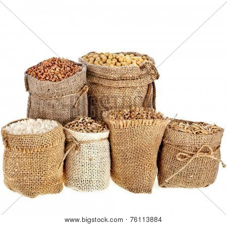 Collection set of seed meal and grains in bags isolated on a white background