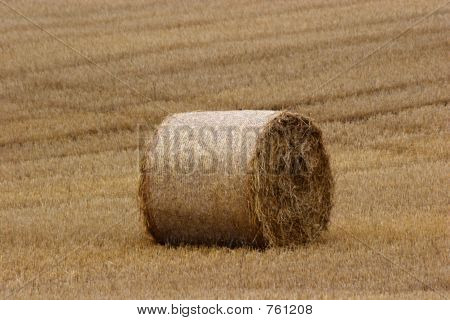 Hay Bails In Field (2)