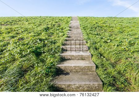 Concrete Stairs Between The Grass