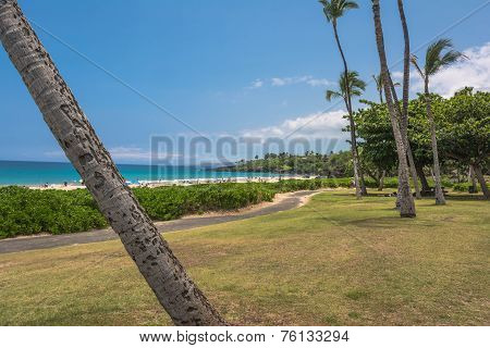 The Hapuna Beach, Big Island