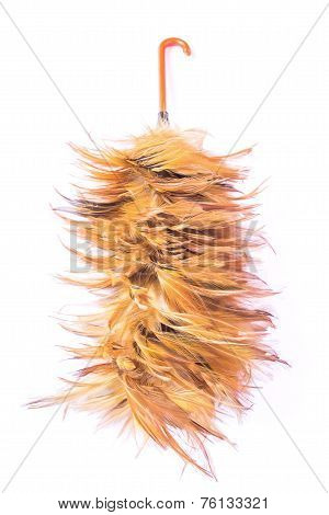 Feather Cleaning On Isolated White Background