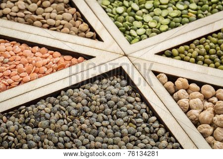 triangles - bean, lentil and pea abstract (adzuki bean, chickpea, green, red  and French lentils, green pea), focus on French lentils