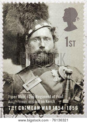 Piper Muir