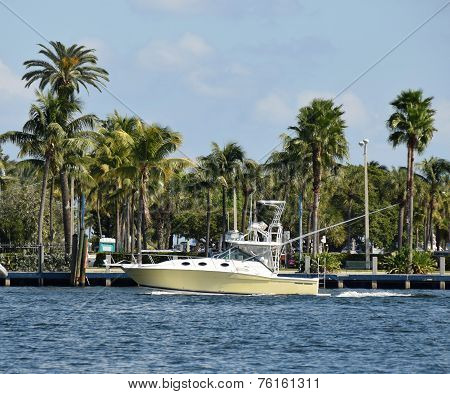 Motorboat In Tropical Florida