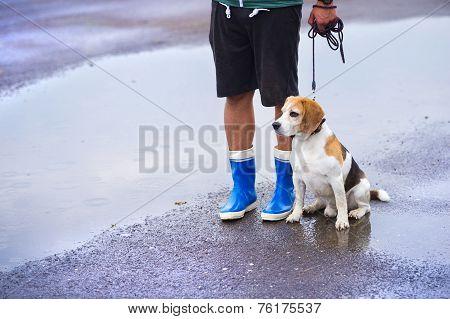 Man walking dog in rain