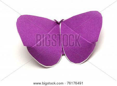 Kirigami Batterfly