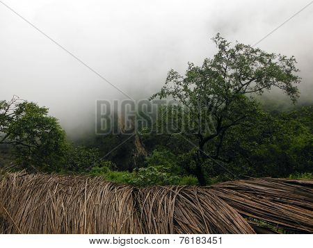 Foggy Green Himalayan Area With Dried Grass