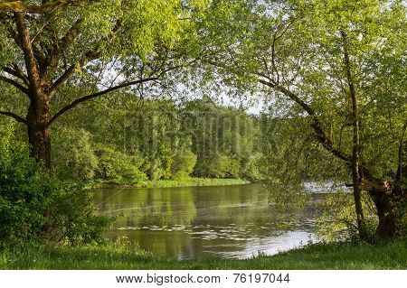 River In Summer