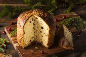 picture of sponge-cake  - Homemade Panettone Fruit Cake Ready for Christmas - JPG