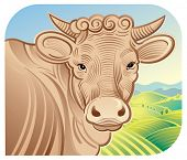 picture of moo-cow  - Cow in a landscape - JPG