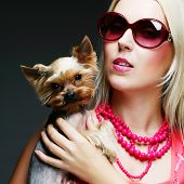 stock photo of yorkie  - Cute young girl with her Yorkie puppy - JPG