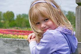 stock photo of lavender field  - Little blond girl on a fence in a tulip field - JPG